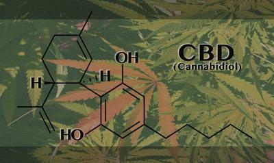 CBD-chemical