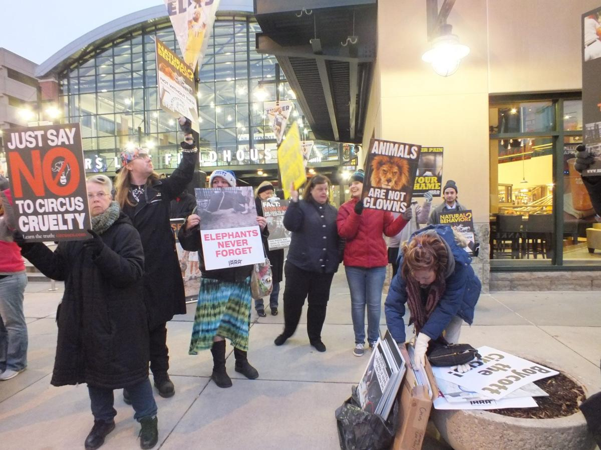 Standing up against cruelty and neglect: The choice to protest the use of circus animals
