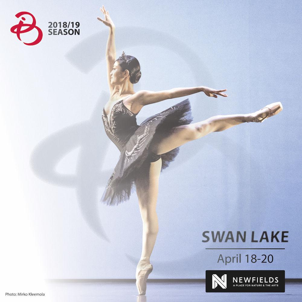IB-SwanLake-square1000