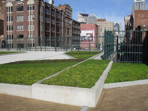 Indy's first green roof completed