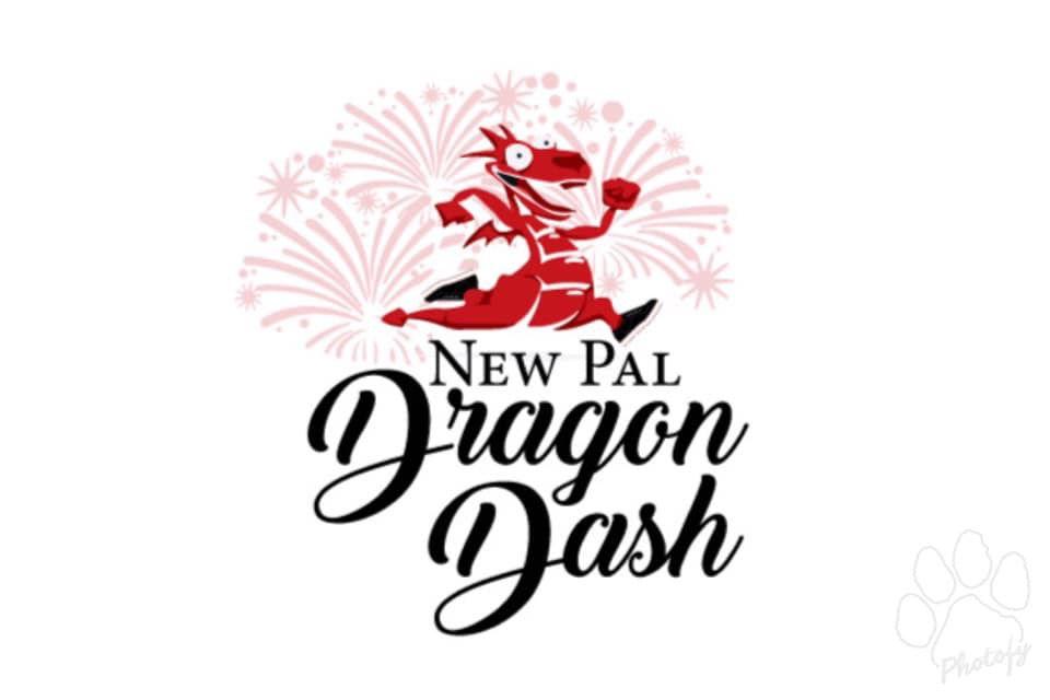 New Pal Dragon Dash