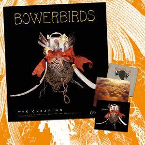 Bowerbirds mini-doc from Dead Oceans