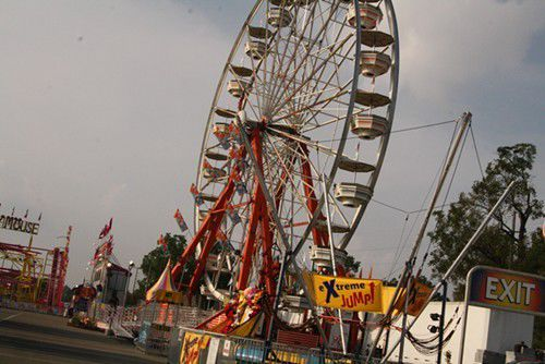 Nora at the State Fair: Day 10