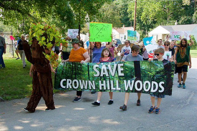 Bleak future for Crown Hill Woods