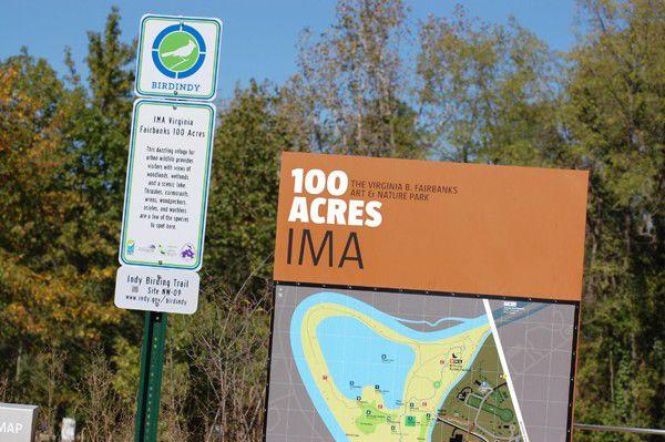 Slideshow: Indy Birding Trail