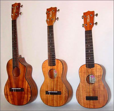All Things Ukulele: Summer of uke