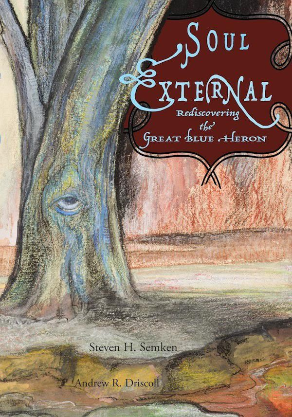 Review: Soul External: Rediscovering the Great Blue Heron