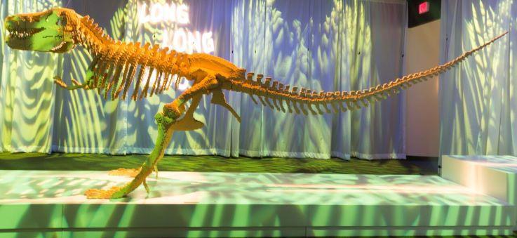 """""""Dinsosaur Skeleton"""" by Nathan Sawaya"""