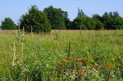 State expands two nature preserves