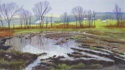 Landscapes at UIndy