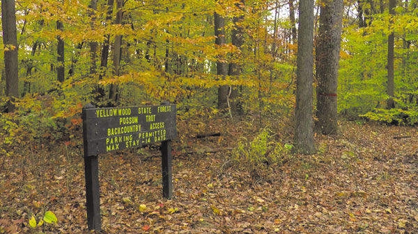 Yellowwood-Backcountry.jpg