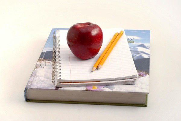 Obstacles in education: a license to teach