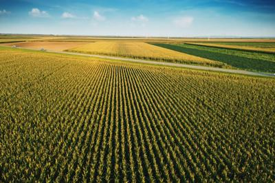 Taiwan commits to buying soybeans and corn from Indiana farmers