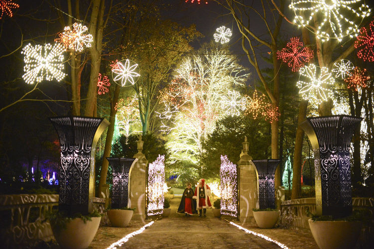 Winterlights at the IMA