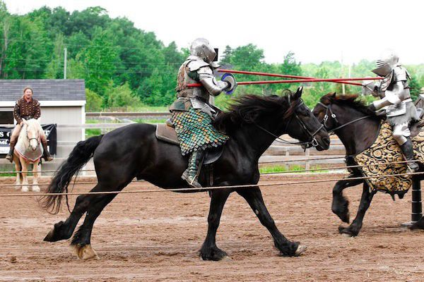 Indiana State Fair 2015: jousting