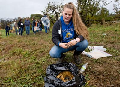 Digging down deep: Students compete in state soils judging contest