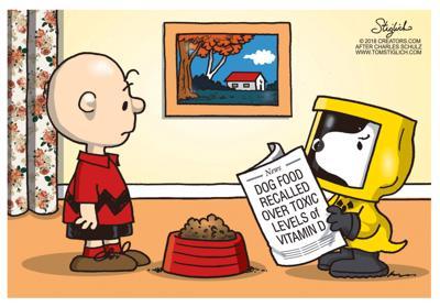 Editorial Cartoon: Dec. 7