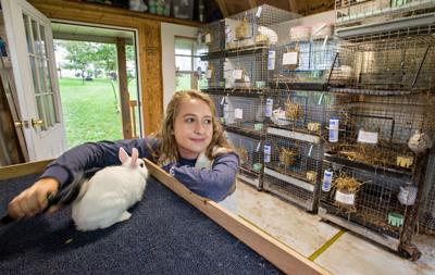 Making nationals: Raising rabbits earns teen spot at FFA National Convention