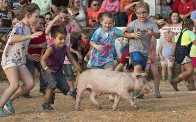 Shenandoah County Fair: Greased Pig Contest