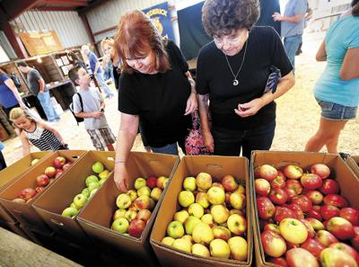 Apple Harvest Festival (copy)