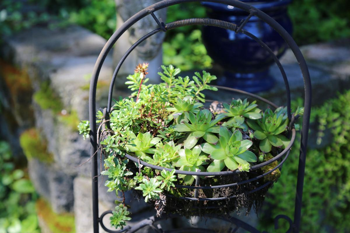 Brighten your garden with recycled finds: Here are some tips on creating garden containers