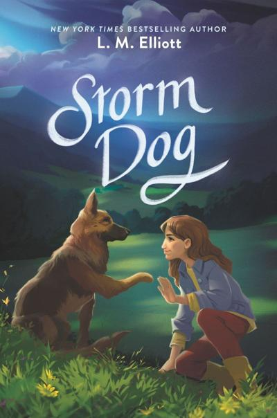 Storm Dog book nvd