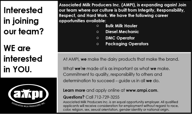 Positions at AMPI