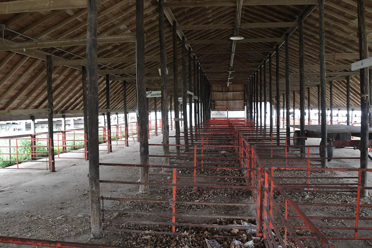 Primghar fairgrounds livestock barn