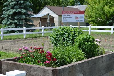 ISU Extension Demonstration Garden