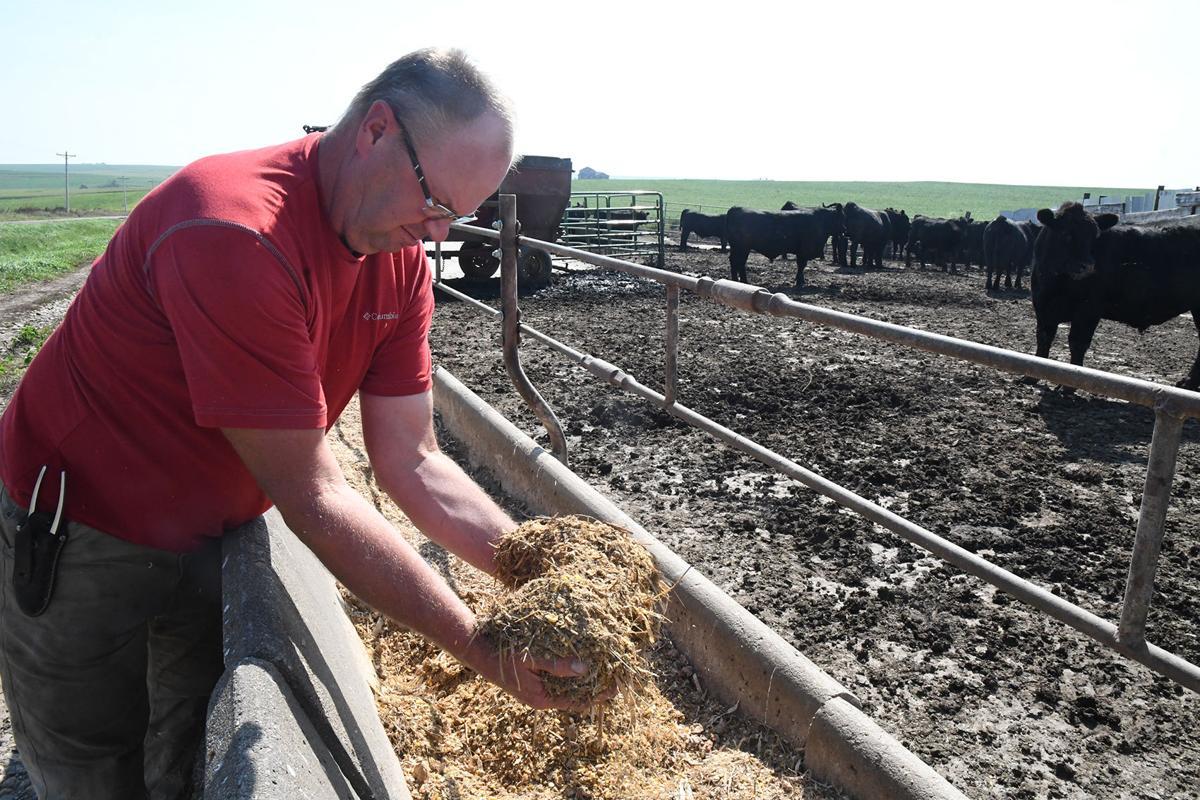 Rehder concerned about ethanol plant halt