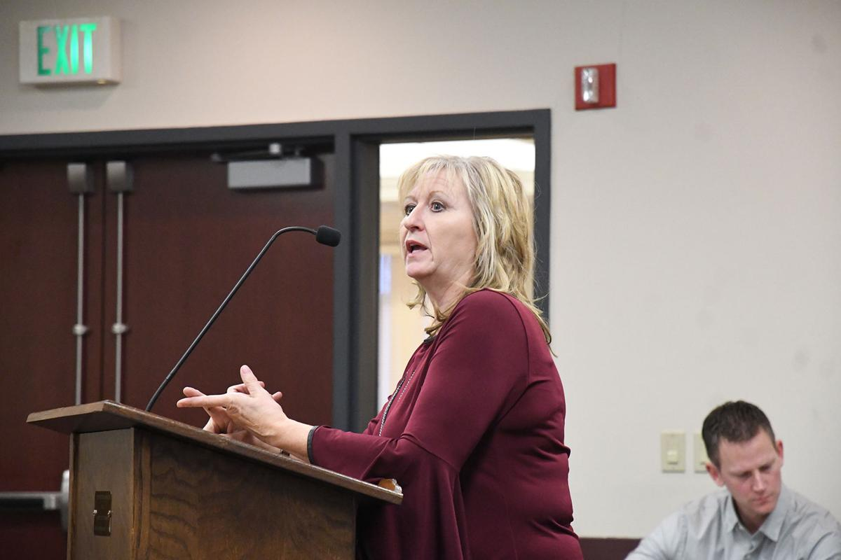 Kathy Sterler talks to council