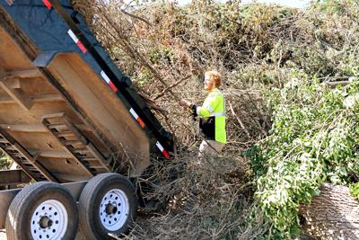 Dumping branches in Sioux Center