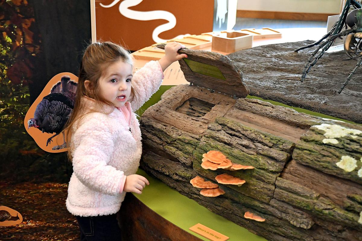 Madison visits nature center