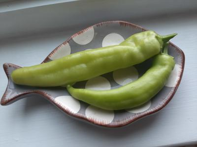 Take 5: A Pair of Peppers