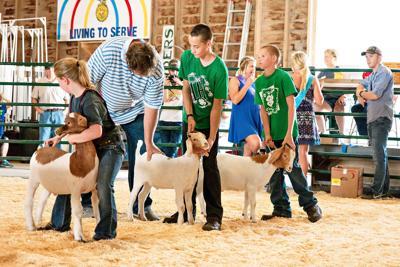 O'Brien County Fair offers fun activities