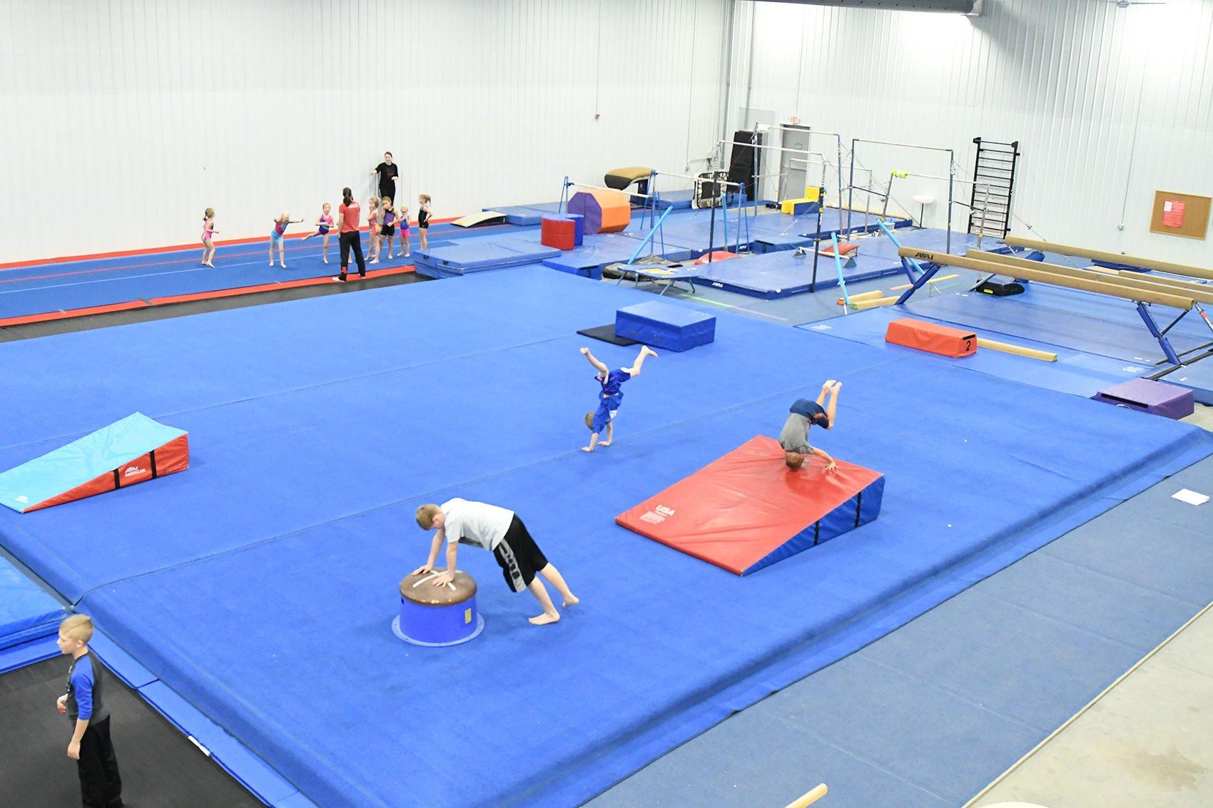 Gymnasts in activity