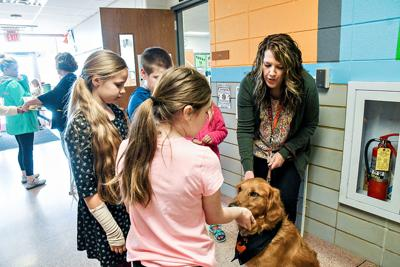 Sheldon school welcomes new therapy dog