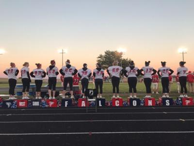 Falcon cheerleaders to collect donations