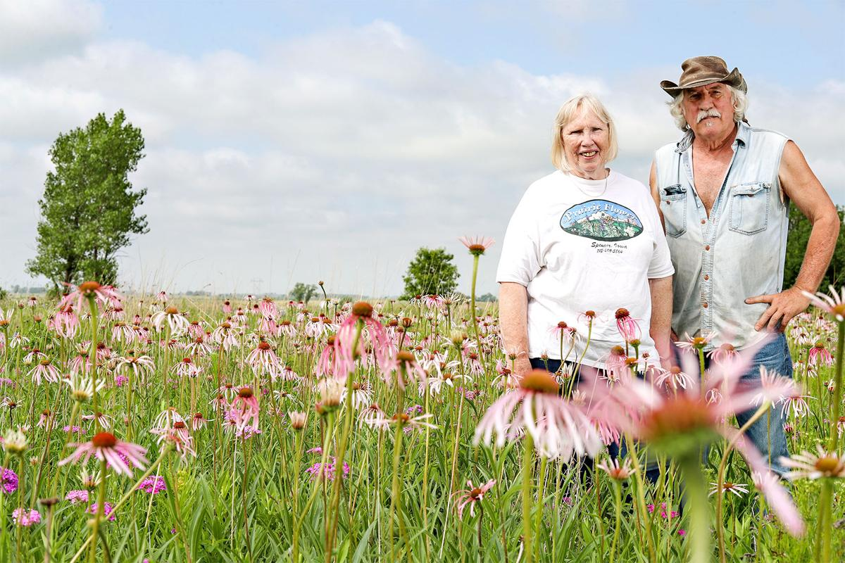 the prairie flower 062819 0101 WEB.jpg