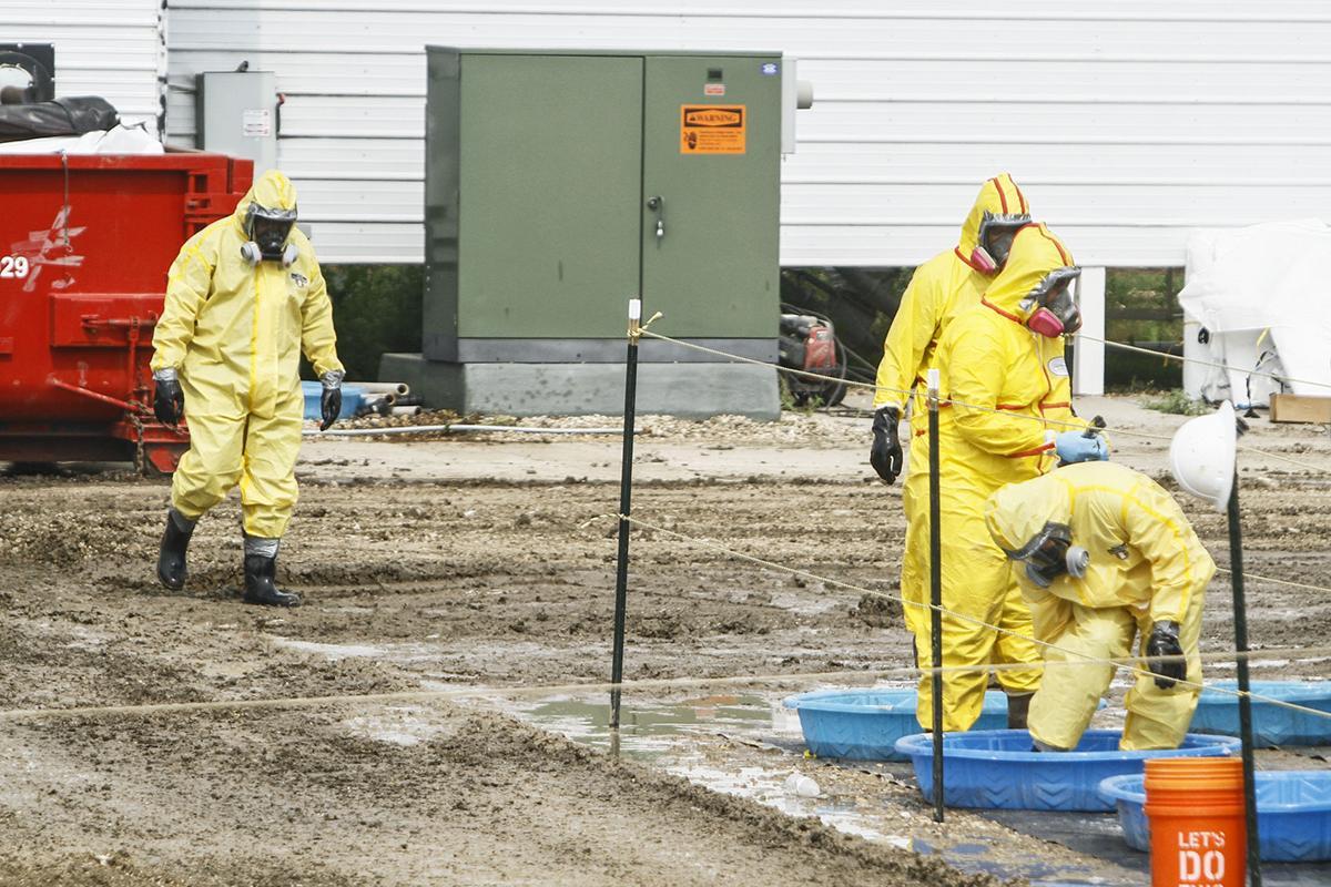 Avian influenza cleanup