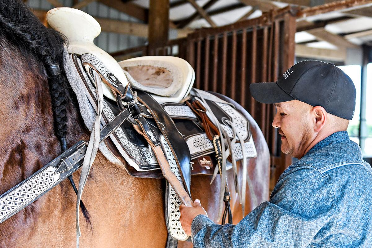 Cesar sets horse saddle