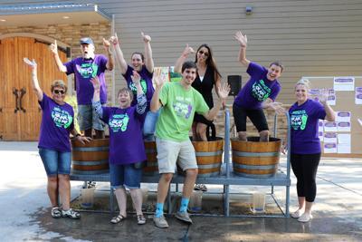 Harvest Festival and Grape Stomp