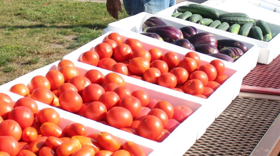 Farmers Market begins tonight