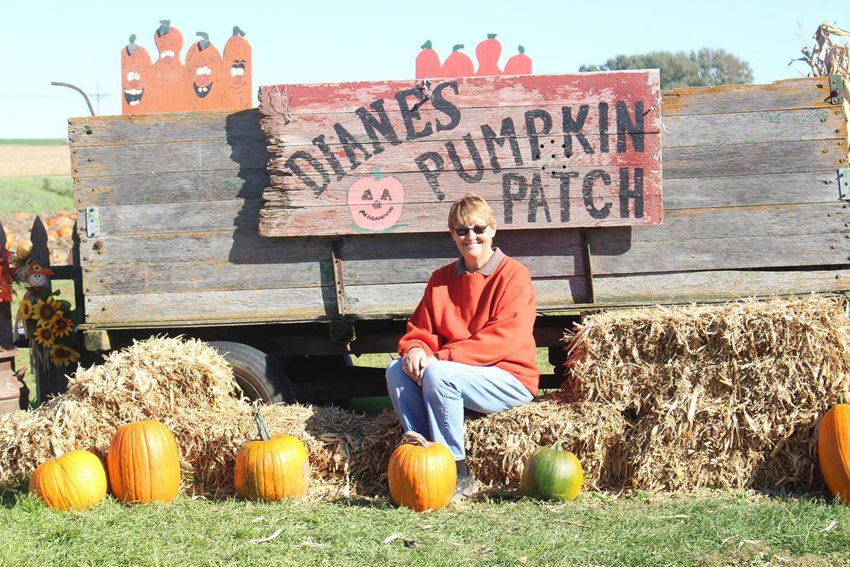 Diane's Pumpkin Patch near Ireton