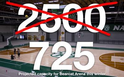 Bearcat Arena Illustration