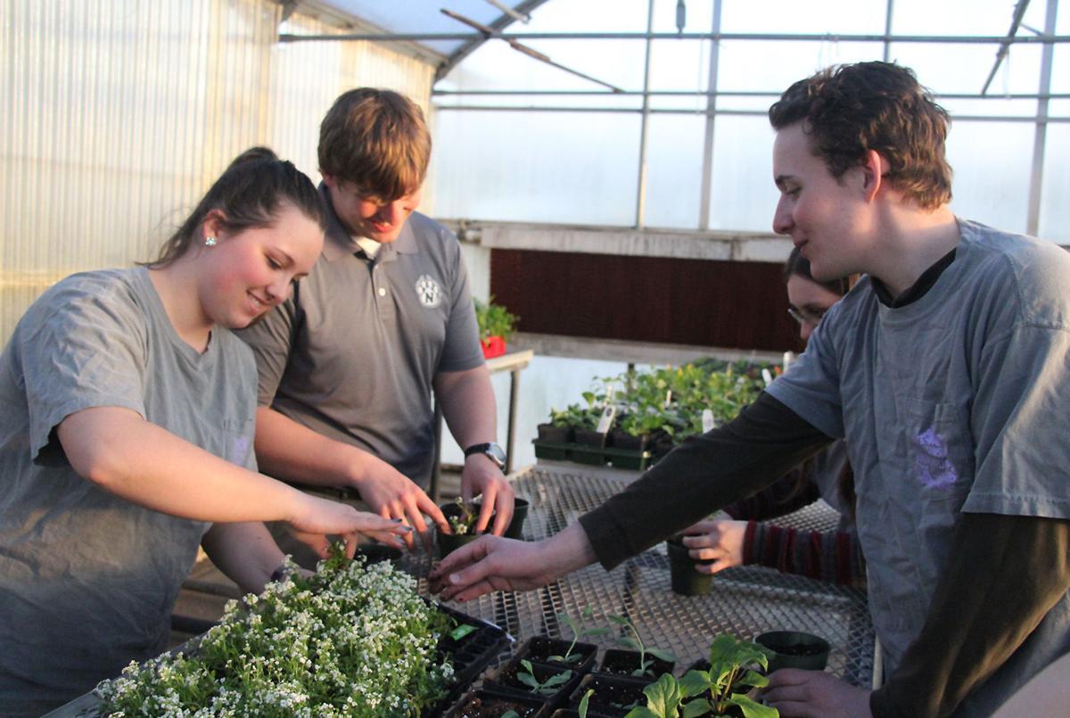 Horticulture Club 2