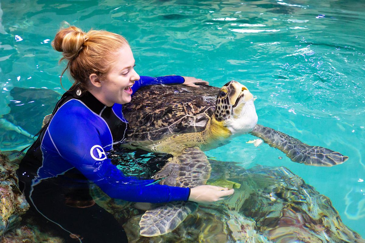 Shell shocked: Student embraces change in internship