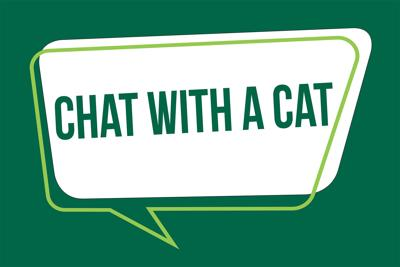 Northwest Career Services Begins Chat With a Cat