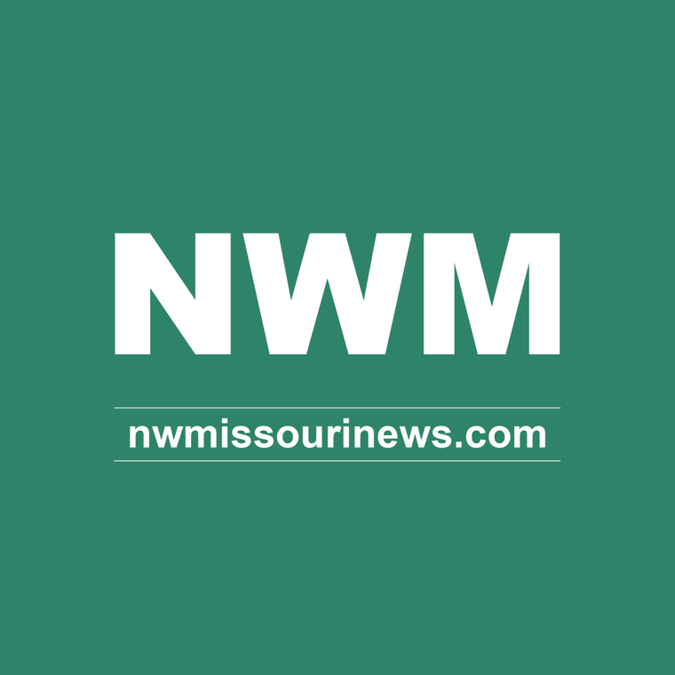Autism Speaks Does Not Deserve Your Money Opinion Nwmissourinews