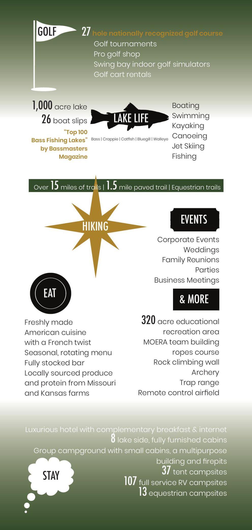 Mozingo Infographic